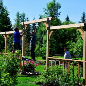 Building the 2nd Trellis