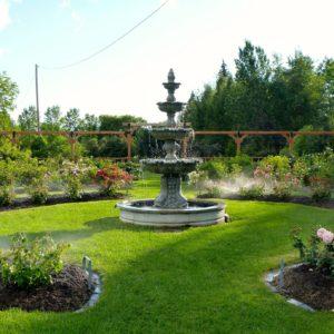 Rose Garden September 2015
