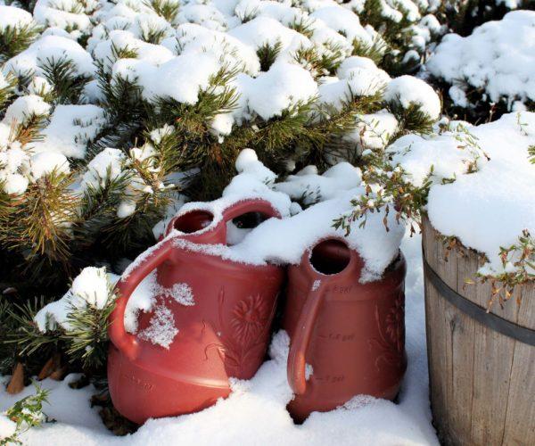 Winter brr...