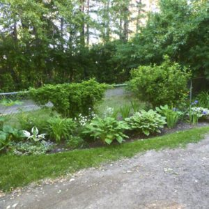 Restful Garden Perennial Bed