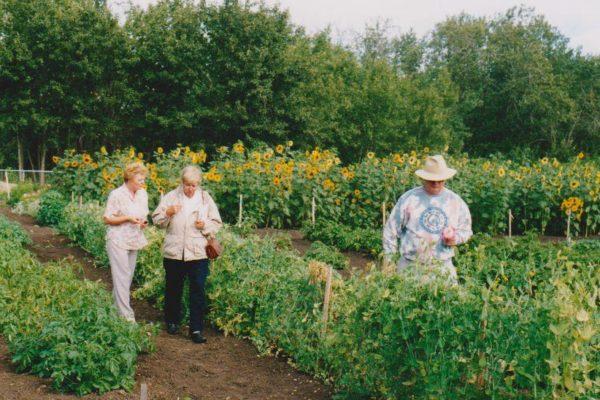 Trial Garden 1999