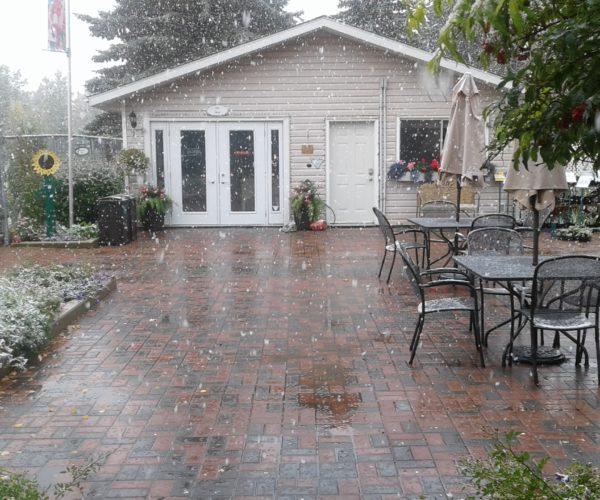 Gift Shop 1st Snowfall