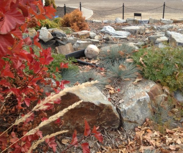 Water Feature in Fall