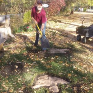 Installing T-Rex footprints